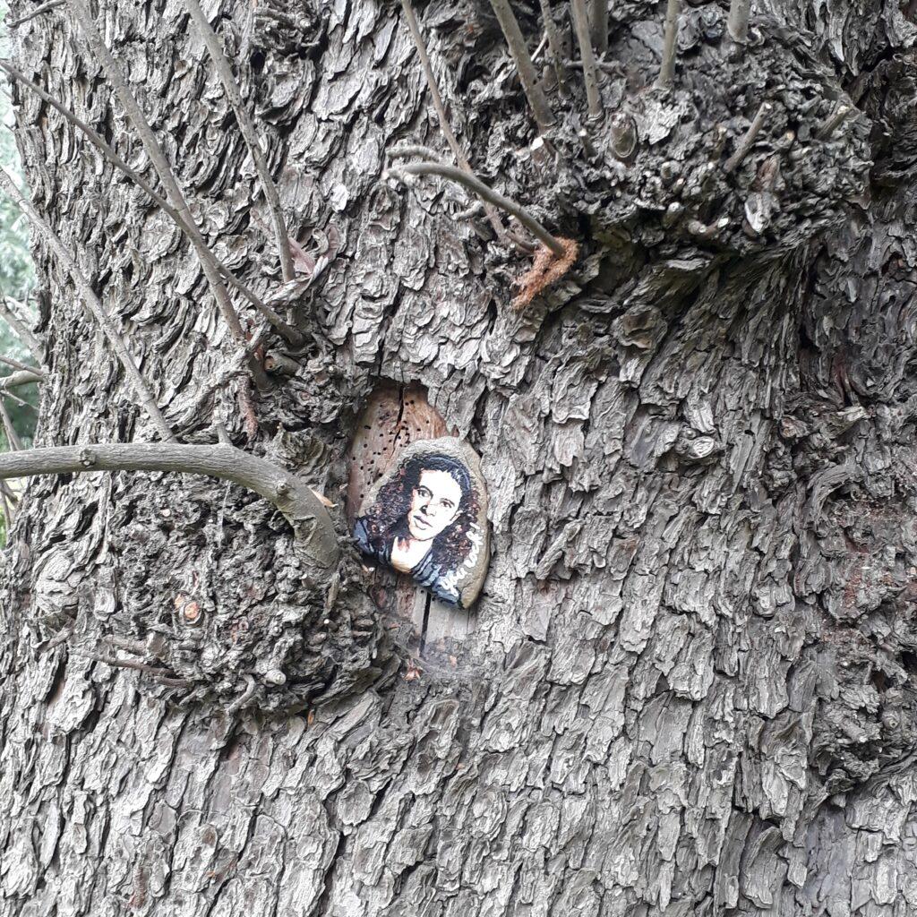 Happystone verstopt in een boom